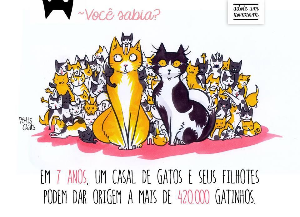 [LIVRO] Como Diria Meu Gato, um projeto que ajuda os gatinhos abandonados (resenha)