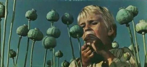 """Cena de """"The Enchanted Desna"""" (1964)."""