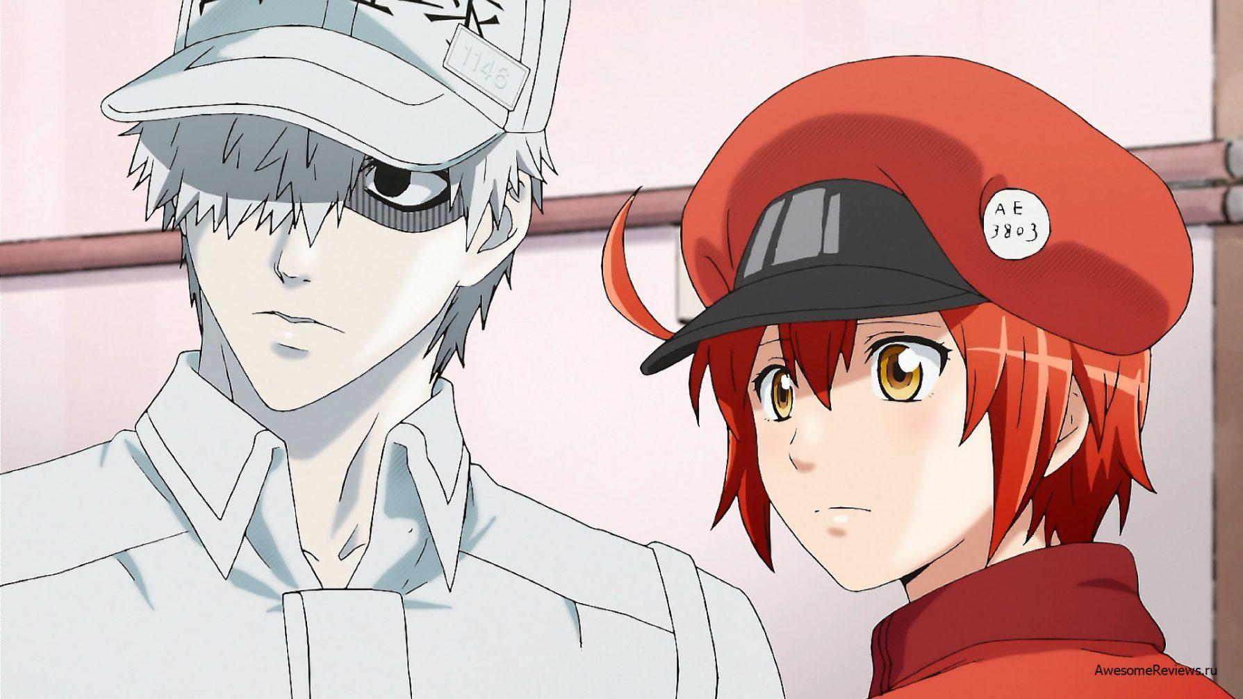 Do lado esquerdo há um rapaz todo vestido de branco (inclusive boné), e ao lado direito uma menina toda vestida de vermelho (inclusive boina)